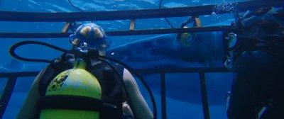 47 méter mélyen előzetes